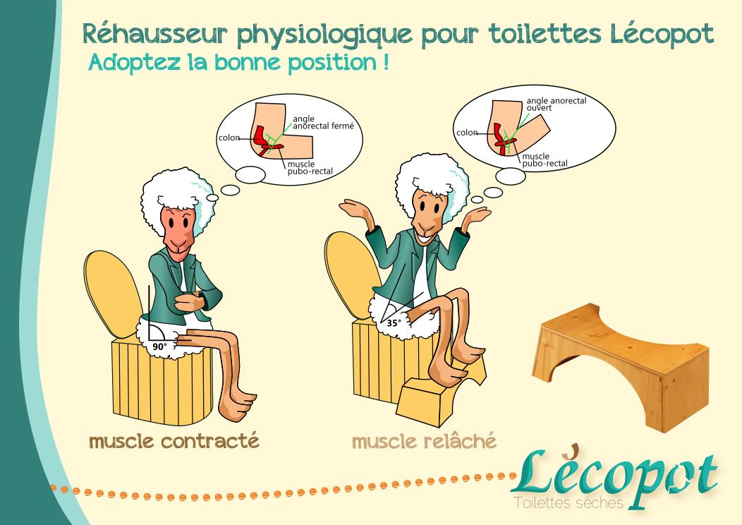 Schéma explicatif position physiologique toilettes sèches Lécopot